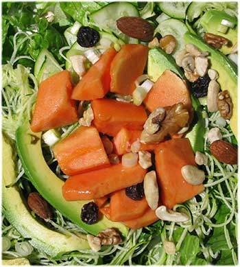 Papaya Avocado Salad
